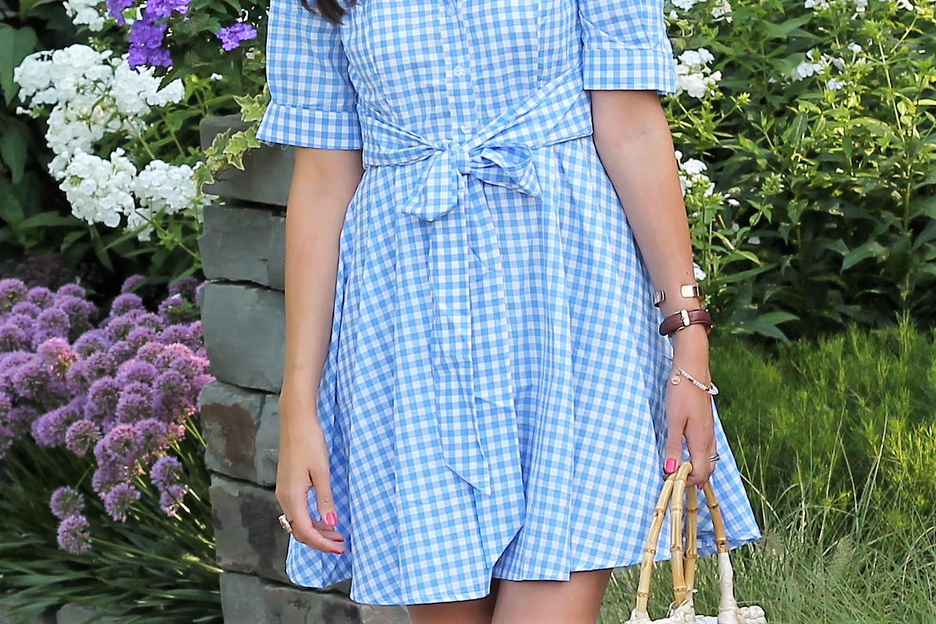 Blue Gingham Shirt Dress + Tips On Moving